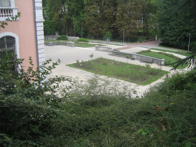 buisson rond5